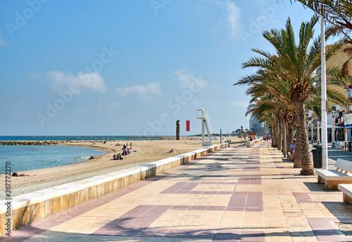 Obraz na plátně Palm-lined promenade and beach of El Campello. Spain
