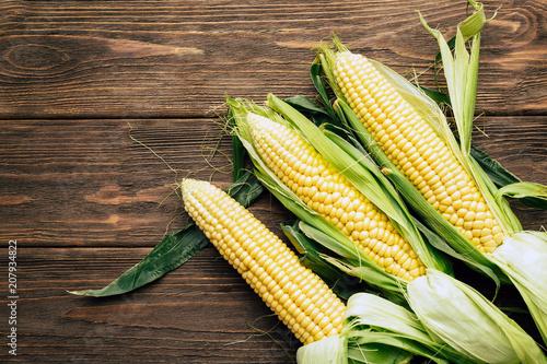 Fotografie, Tablou corn cob, wooden background, top view, agriculture