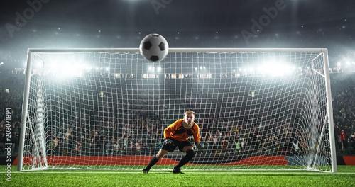 Fotomural Soccer goalkeeper in action on the stadium