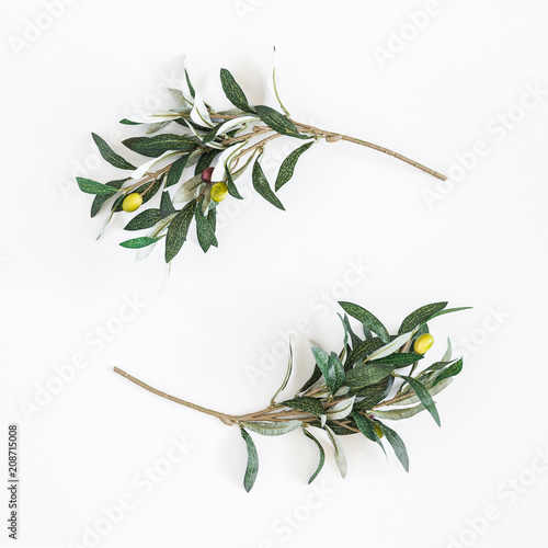 Olive branches on white background. Flat lay, top view, copy space, square