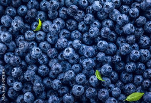 Fresh blueberry Fotobehang