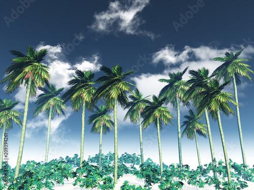 3D krajobraz drzewa palmowego