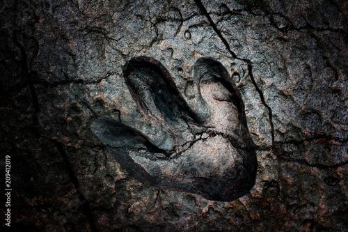 Fototapeta premium Crack złamane dinozaur ślad ciemne tło