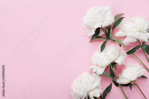 White peony flowers on pink pastel table top view and flat lay style.