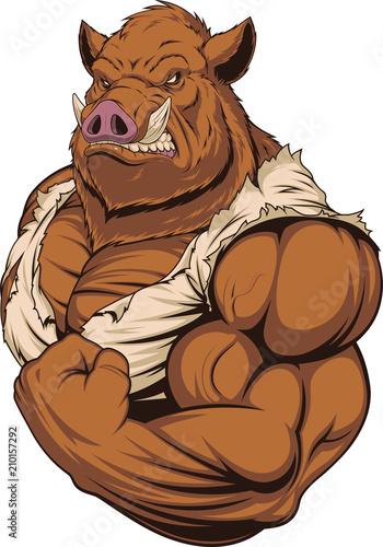 Fototapeta Strong ferocious boar