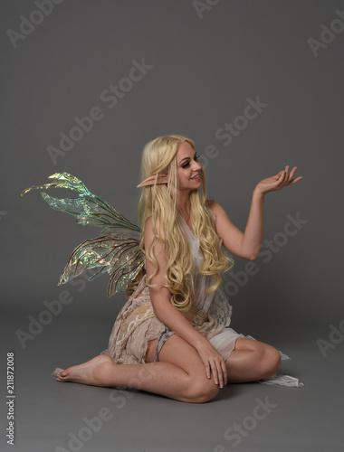 Fototapeta full length portrait a blonde girl wearing fairy costume