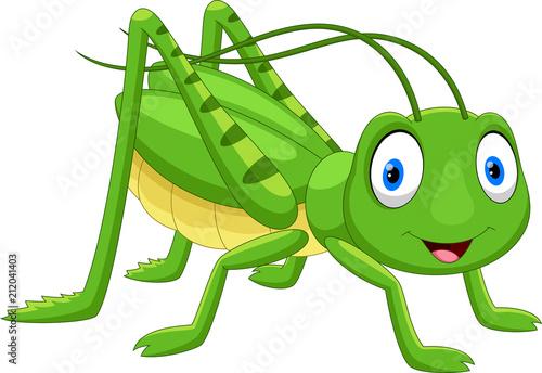 Cute grasshopper cartoon isolated on white background Fototapet