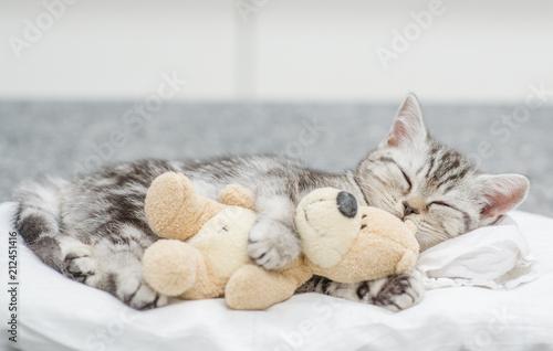 Photo Cute baby kitten sleeping with toy bear