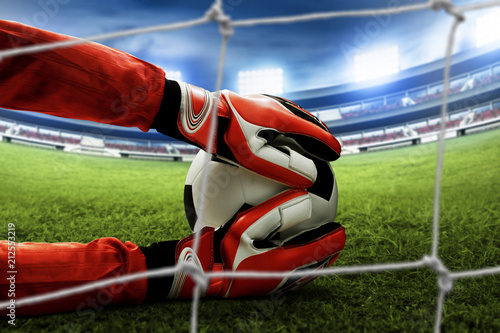Soccer goalkeeper catches the ball Fototapete