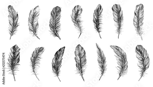 Canvastavla Vector Black and White Feather Pattern