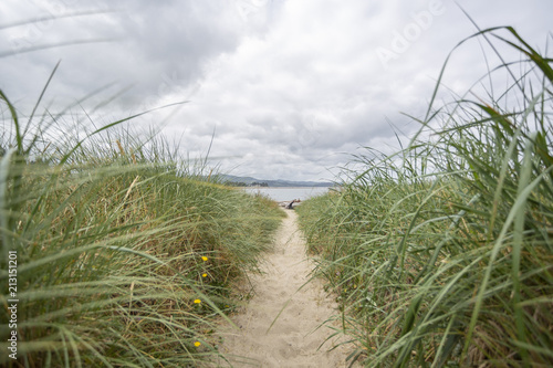 Path in grass to the beach. Blur background and front grass.