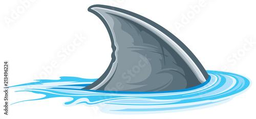 Fototapeta premium Płetwa rekina