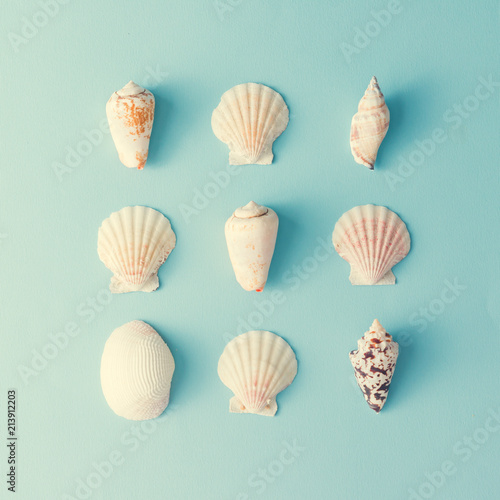 Fotomural Creative various seashell pattern on pastel blue background