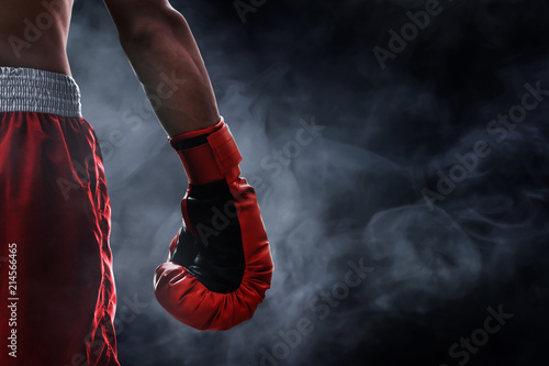 Canvas Print Red boxing glove