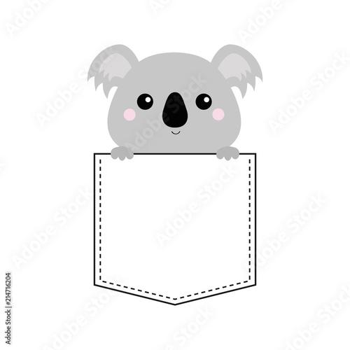 Fototapeta premium Twarz misia koala siedzi w kieszeni. Trzymając się za ręce. Postać z kreskówki ładny. Projekt koszulki. Linia przerywana. Zwierzak domowy. Kolor biały czarny. Tło dla dzieci. Płaska konstrukcja