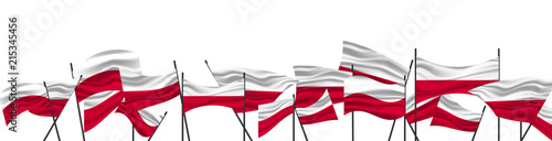 Wallpaper Mural Cheering crowd with Poland national flags. The flag of Poland.
