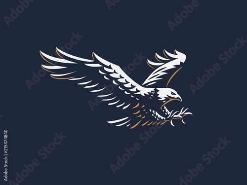Foto The flying eagle.