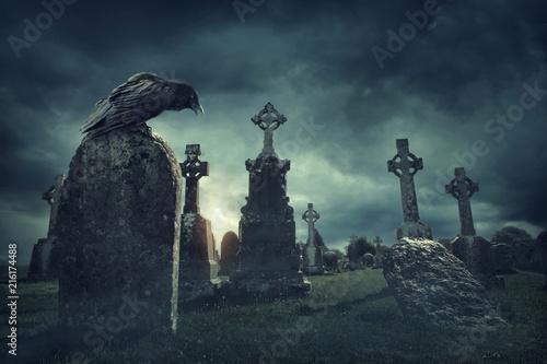Fotografija Spooky old graveyard and a bird