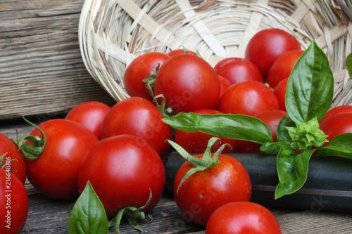 pomidory i zioła