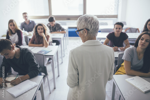 Teacher Teaching a Lesson Fototapeta