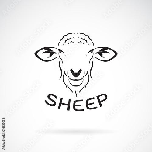 Fototapeta premium Wektor konstrukcji głowy owiec na białym tle. Dzikie zwierzęta. Łatwe edytowanie warstwowych ilustracji wektorowych.
