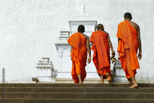 Canvas Print monks coming in ruwanwelisaya stupa in anuradhapura historical parc ,Sri Lanka