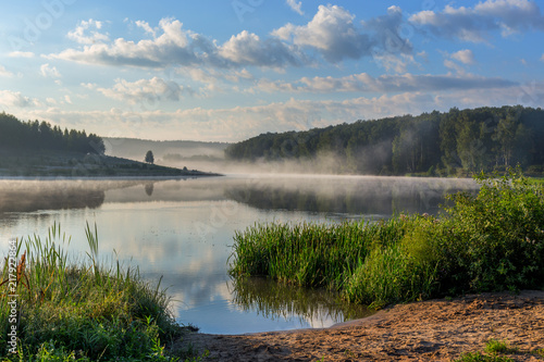 Canvas Print foggy lakeside at summer sunrise with tall grass