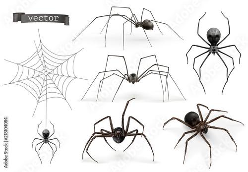 Realistic spider. Halloween 3d vector icon set Fototapeta