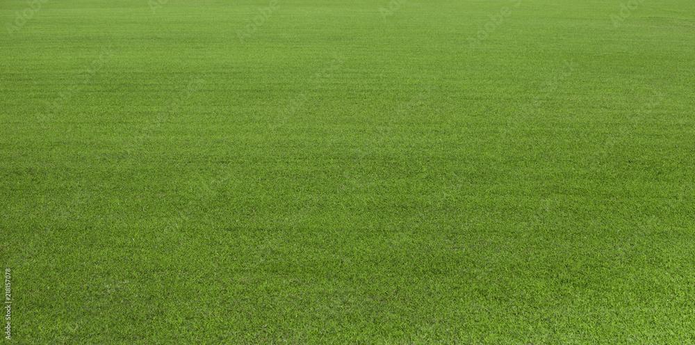 Pole zielone trawy, zielony trawnik. Zielona trawa na pole golfowe, piłkę nożną, piłkę nożną, sport. Zielonej murawy trawy tekstura i tło dla projekta z kopii przestrzenią dla teksta lub wizerunku. <span>plik: #218157078 | autor: somchaisom</span>