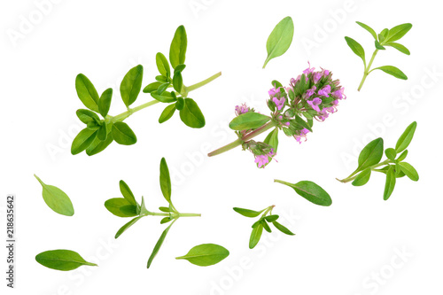 Obraz na plátně Fresh thyme spice isolated on white background