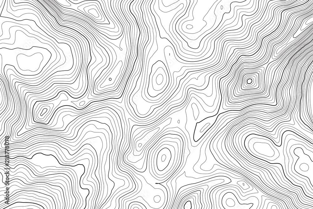 Wektor kontur tło mapy topograficznej. Topografia i geografia mapa siatka streszczenie tło. Pomysł na biznes. Ilustracji wektorowych <span>plik: #218778078 | autor: Nabugu</span>