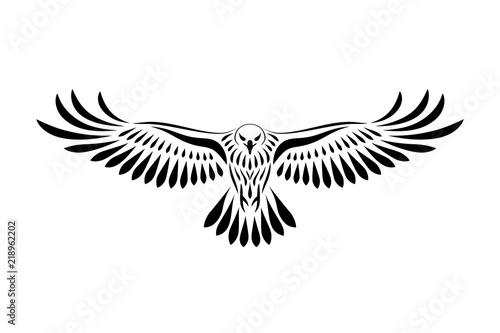 Valokuva Engraving of stylized hawk. Linear drawing. Decorative bird.
