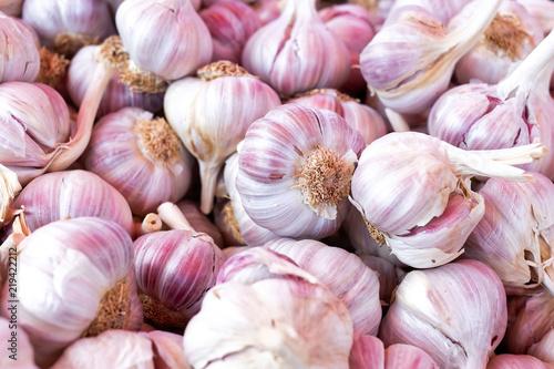 Background of pink garlic bulbs.
