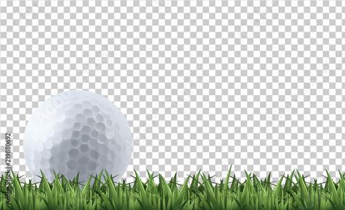 Tablou Canvas Golf ball on grass