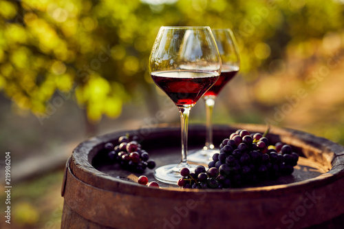 Two glasses of red wine in the vineyard