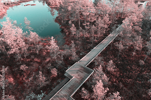 Canvas Print Aerial scenic view from drone with infrared effect in photo of wooden boardwalk decking between lake and swamp in nature reserve park