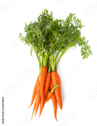 Canvas Print Fresh carrot heap vegetables isolated on white