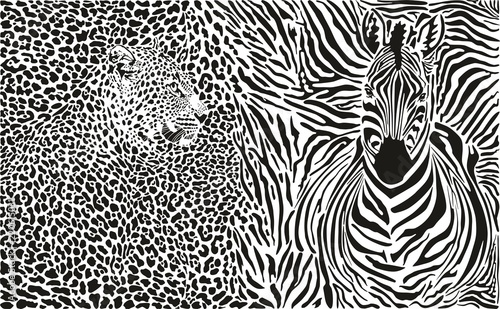 Fototapeta premium Tło z lampartem i zebrą