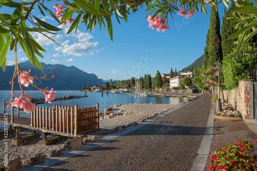 Fototapeta Spazierweg am Gardaseeufer Malcesine, Blick durch Oleanderzweige