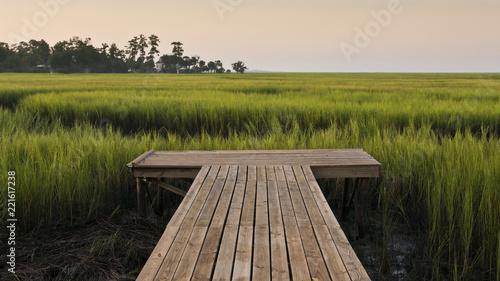 Photo Dock on Marsh