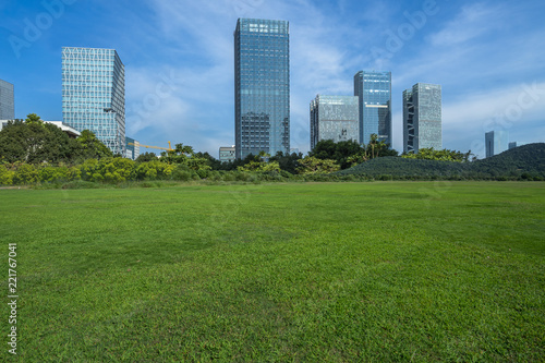 green lawn with city skyline background