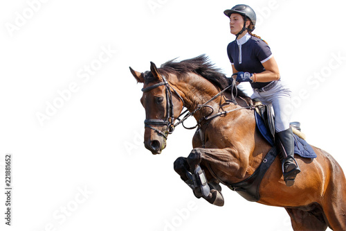 Horse rider girl jumping over an obstacle isolated on white background. Show jumping competition background
