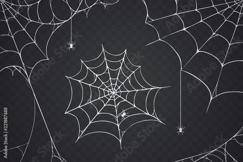 Obraz na plátně Scary spider web vector illustration
