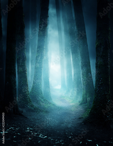 A pathway between trees leading into a dark and misty forest Fototapet