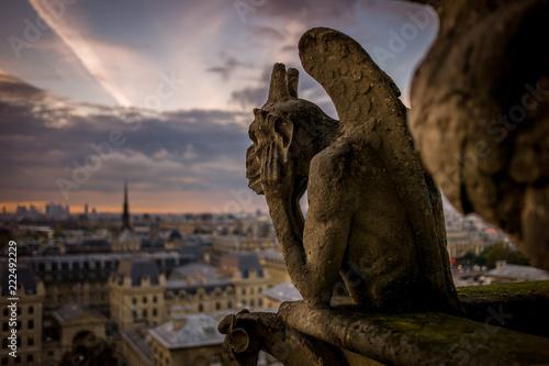 Fotografie, Obraz Notre Dame