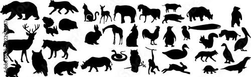 Fotografiet 自然界の動物のシルエット
