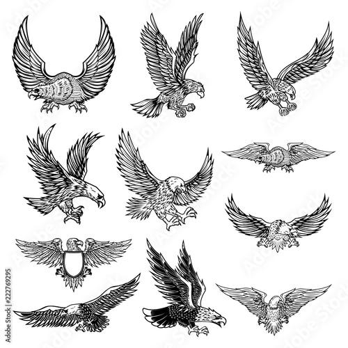 Illustration of flying eagle isolated on white background. Fotobehang