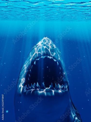 Photo 3d rendered illustration of a shark