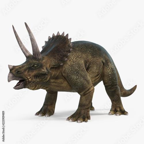 Photo Triceratops dinosaur on bright background. 3D illustration