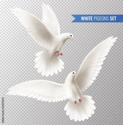 Billede på lærred White Dove Set